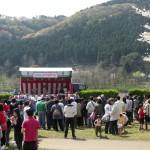 おおさわ桜祭り2