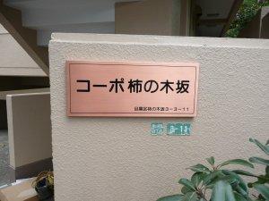 syuuri2